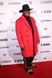 Producer Vanda Lee attends the premiere of 'A-Minor' at Raleigh Studios in Hollywood.